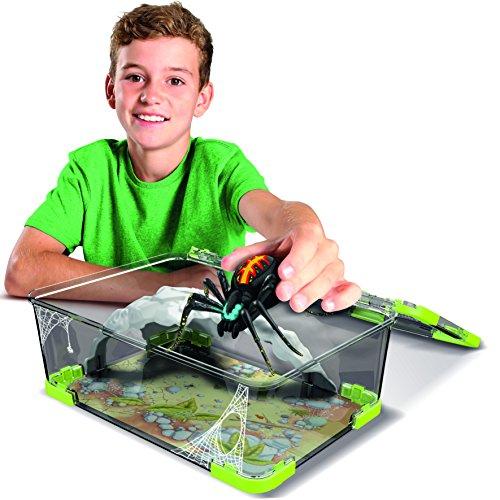Wild Pets Spinne / Spider - 5