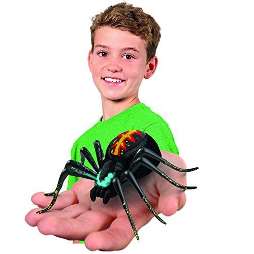 Wild Pets Spinne / Spider - 6
