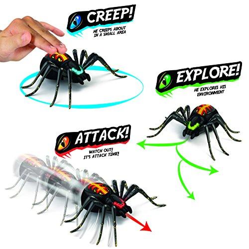Wild Pets Spinne / Spider - 9