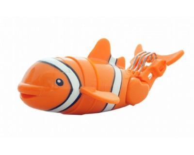 Lil' Fishys Clownfish