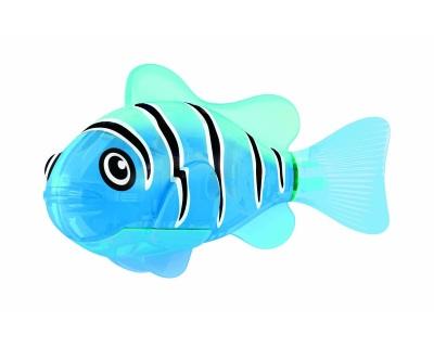 Robo Fish Blau leuchtet!
