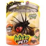 Wild Pets Spider Creepster schwarz